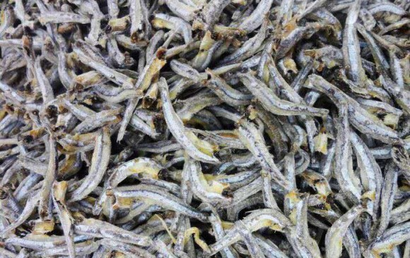 Dry Anchovy